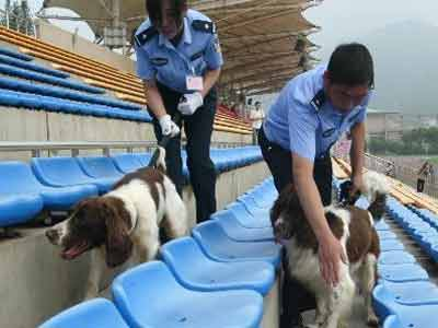 Search of police dog of Olympic Games security explodes